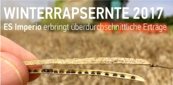 WINTERRAPSERNTE 2017 – EURALIS