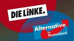 Falk Rodig – Fraktionen von AfD und Linken stimmen in Berlin gemeinsam ab