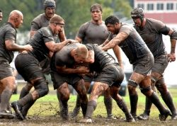 Rugby-Domains: Nichts paßt besser zu Rugby