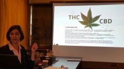 Feinheiten der Cannabis-Massage lernen
