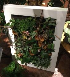 Gartenkunst oder Innovation: Vertikale Gärten im Haus