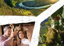 Die Wünschelrouten: Das neue Moselsteig Wanderevent im Herbst
