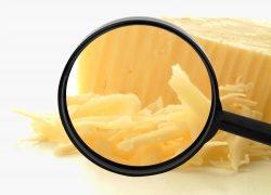 Alles Käse? Vernetzte Digitalisierung macht mehr aus Ihren Daten