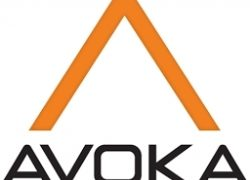 Avoka erweitert Geschäft der Credit Union im Dienste der Tech Community