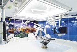Aorten-Zentrum in Siegen: OP-Techniken an der Aorta