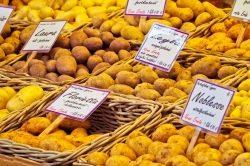 Rein in die Kartoffeln