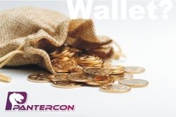 Pantercon: Mit Kryptowährungen (Bitcoin) zur finanziellen Unabhängigkeit?