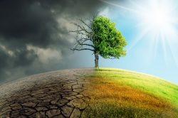 UN-Weltklimakonferenz in Kattowitz geht zu Ende – Alarmglocken schrillen