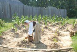 Ohne Virginia keine USA: Bundesstaat feiert in diesem Jahr 400 Jahre US-amerikanische Kultur