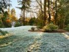 Gartenbau aus Stuttgart: Gartentipps für die Kälte