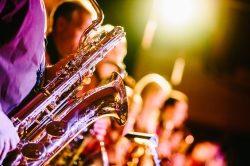 Trommelwirbel!!! Die Music-Domains gehen an den Start…
