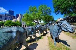 Familienparadies Dallas & Fort Worth