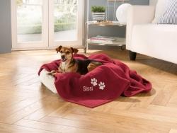 Gemütliches Zuhause für Hund und Katze