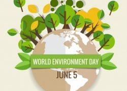Sonderaktion von Casa Bruno am 5. Juni 2019 (Weltumwelttag)