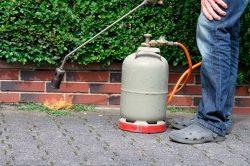 Abflammgeräte: Unkraut vernichtet – Hecke in Brand