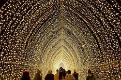 Winterzauber in Illinois: Licht-Festivals setzen Städte stimmungsvoll in Szene