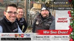 Im Saterland am c-Port gibt es Hundeschlittenfahrten beim ersten schuhplus – Weihnachtsmarkt