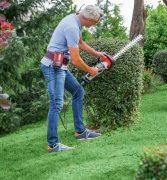 Tipps und Tricks für ein grünes Jahr