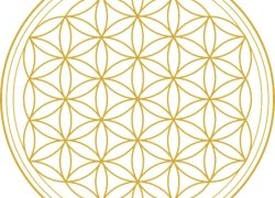 Fasten und Abnehmen mit Ayurveda – Webinare