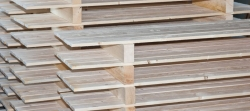 Nachhaltige Logistik mit Paletten für Firmen aus Rheinau