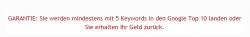 Suchmaschinenoptimierung von Nabenhauer Consulting: die Webseite in Top10 von Google schnell platzieren