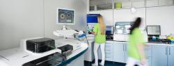 Schenkelhalsfraktur – Infos vom Endokrinologen aus Mainz