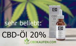 CBD Öl 20 %: Die beliebte Dosierung des Cannabidiols
