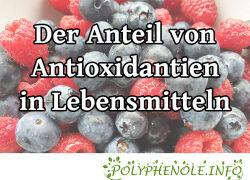 Der Anteil antioxidativer Stoffe diverser Lebensmittel