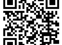 Ayurveda-Aus- und Weiterbildungen Online