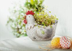 Endlich Frühling – endlich Osterzeit bei erwinmueller.de