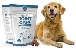 Leckerli statt Pillen: Neuartige Chews halten Hunde gesund