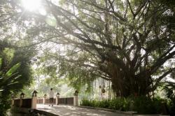 Banyan Tree launcht Post-Covid-Wohlfühl-Offensive